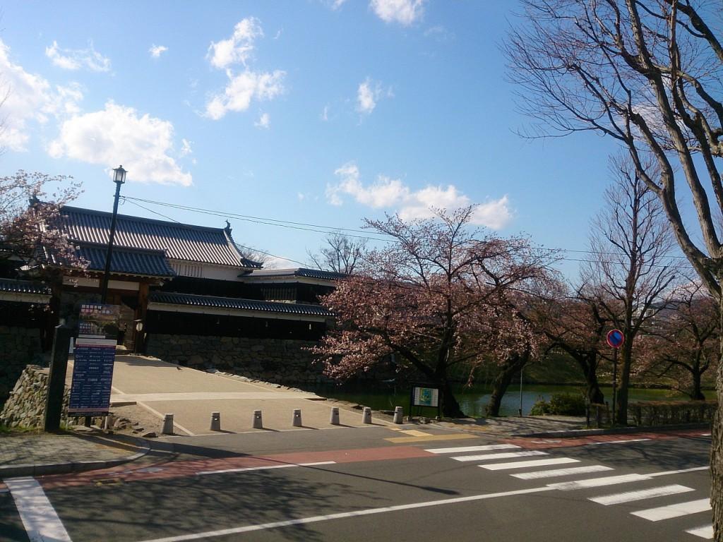 城と桜-右